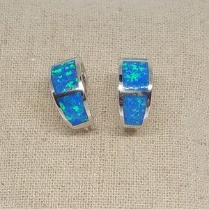 Jewelry - Sterling Silver Wide Loop Earrings